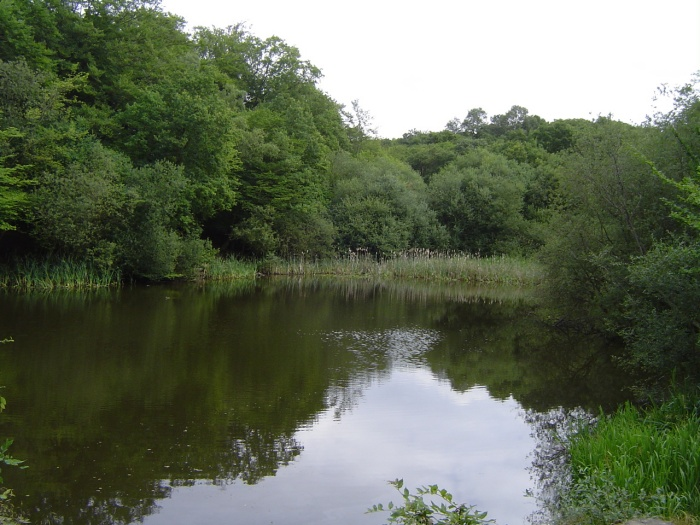 baldwins hill pond by peter house and carol murray.jpg