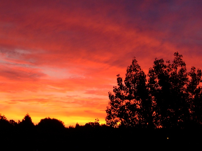 loughton sunrise by paul durrent.jpg